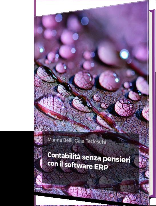 ebook_cover_vision_contabilita_senza_pensieri_erp